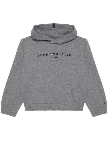 Tommy Hilfiger Bluza Essential Hooded Sweatshirt KG0KG05216 Szary Regular Fit